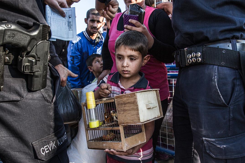 17_boy-refugee-kobane-bird-cage-turkish-police